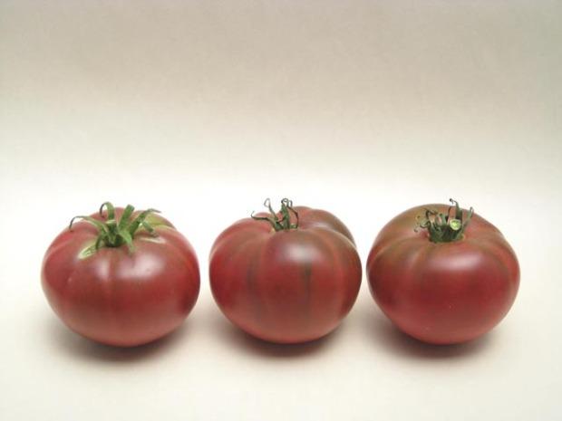 tomatoblackkrim