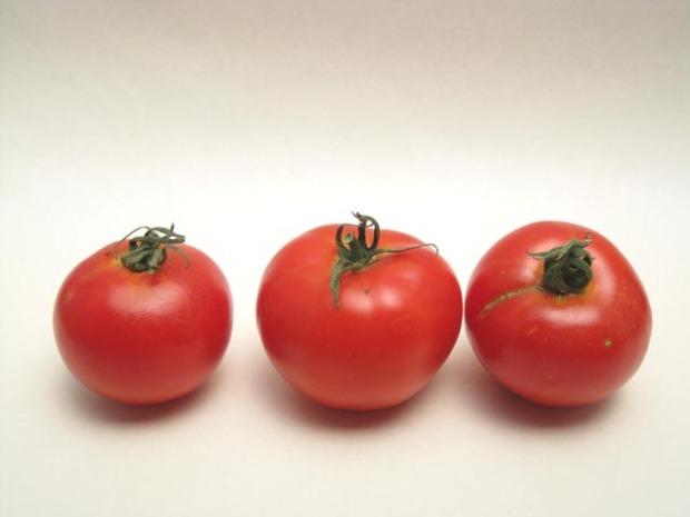 tomatoearlygirl